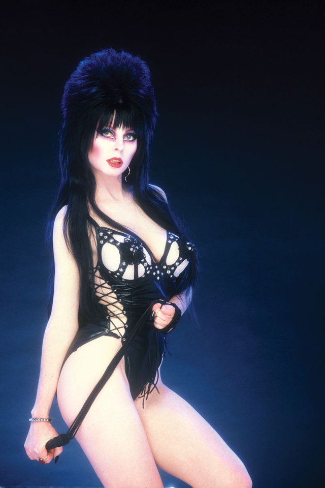 The Shape of Elvira #1 (40 Copy Photo Virgin Cover)