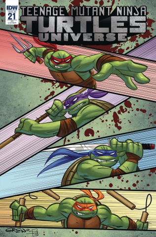 Teenage Mutant Ninja Turtles Universe #21 (10 Copy Cover)
