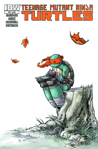 Teenage Mutant Ninja Turtles #30