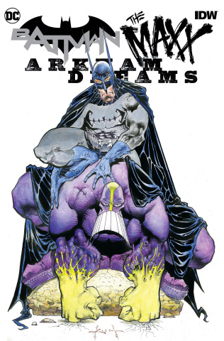 Batman / The Maxx: Arkham Dreams #1 (Arkham Dreams Kieth Cover)