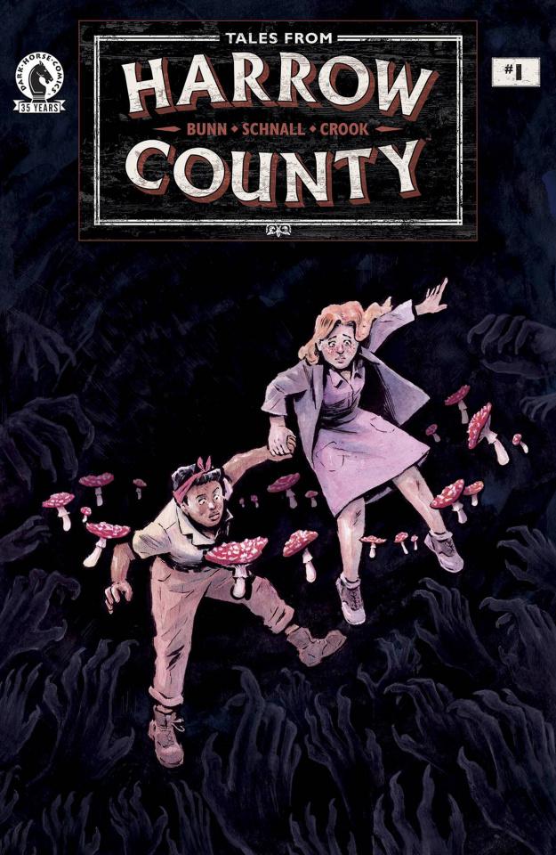 Tales From Harrow County: The Fair Folk #1 (Schnall Cover)