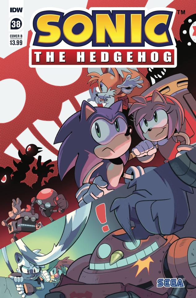 Sonic the Hedgehog #38 (Rothlisberger Cover)