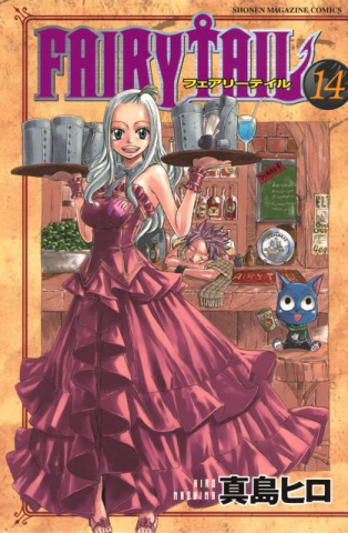 Fairy Tail Vol. 14