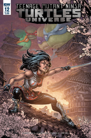Teenage Mutant Ninja Turtles Universe #12 (Williams II Cover)