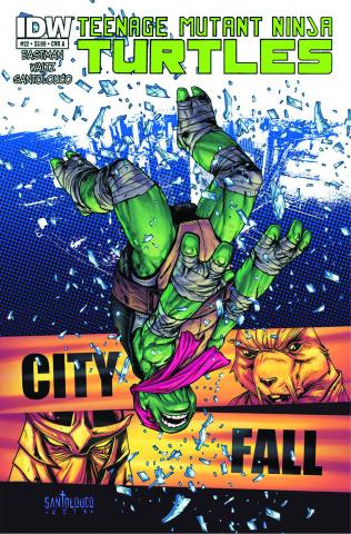 Teenage Mutant Ninja Turtles #22 (2nd Printing)