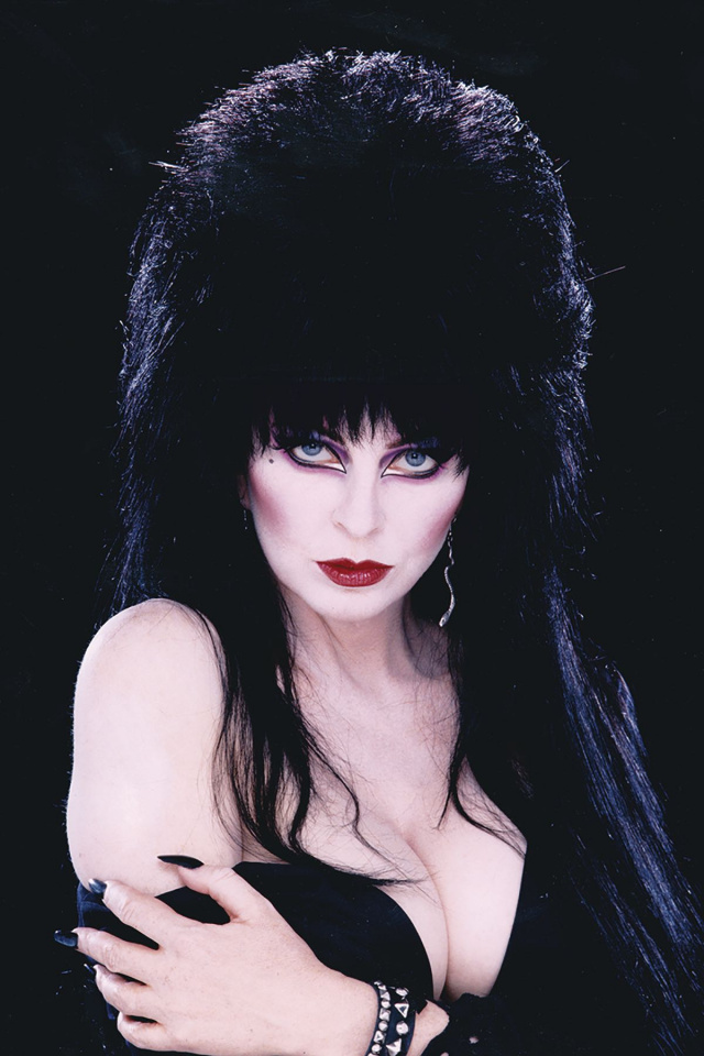 The Shape of Elvira #2 (40 Copy Photo Virgin Cover)