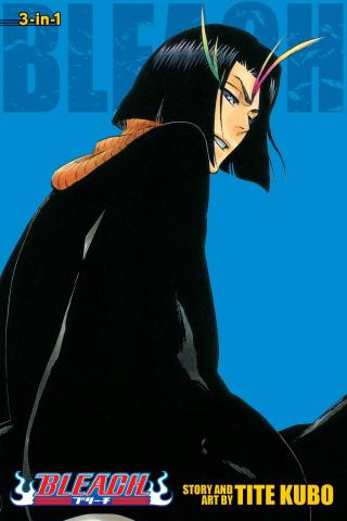 Bleach Vol. 13 (3-in-1 Edition)