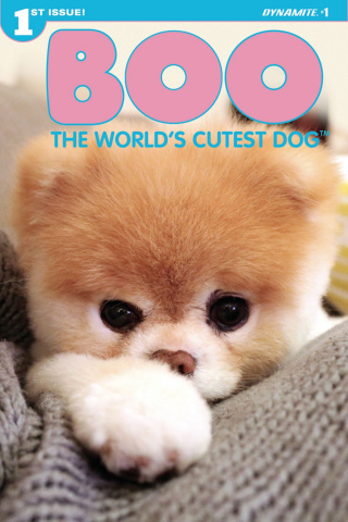 Boo: The World's Cutest Dog #1 (Photo Cover)