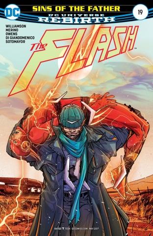 The Flash #19