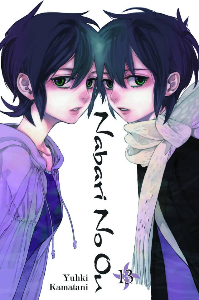 Nabari No Ou Vol. 13