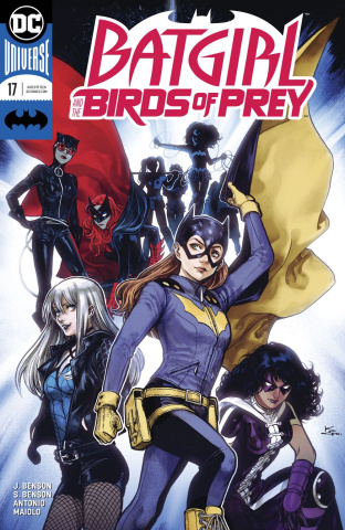 Batgirl and The Birds of Prey #17 (Variant Cover)