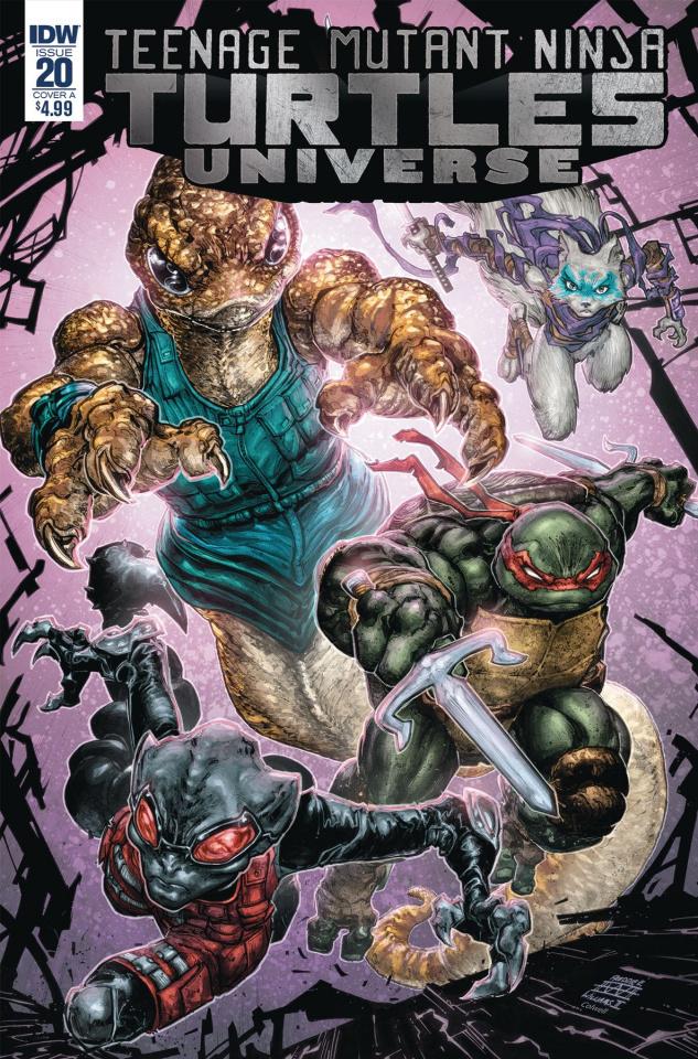 Teenage Mutant Ninja Turtles Universe #20 (Williams II Cover)