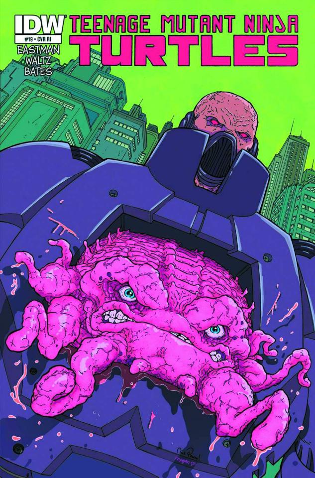 Teenage Mutant Ninja Turtles #19 (2nd Printing)