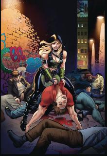 Van Helsing vs. Robyn Hood #2 (Ortiz Cover)