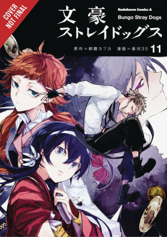 Bungo Stray Dogs Vol. 11