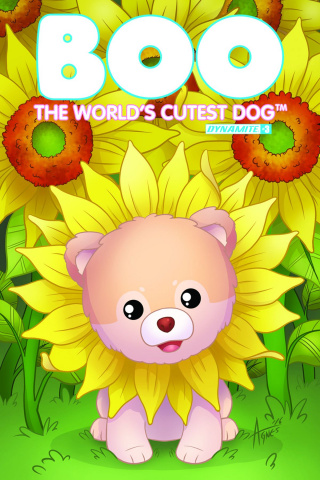 Boo: The World's Cutest Dog #3 (Garbowska Cover)