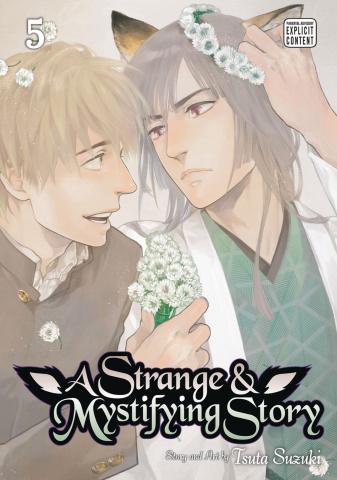 A Strange & Mystifying Story Vol. 5