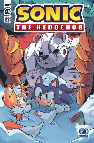 Sonic the Hedgehog #35 (Rothlisberger Cover)