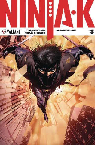 Ninja-K #3 (Hairsine Cover)