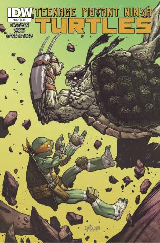 Teenage Mutant Ninja Turtles #35