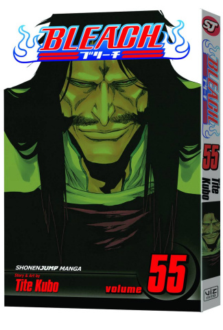 Bleach Vol. 55