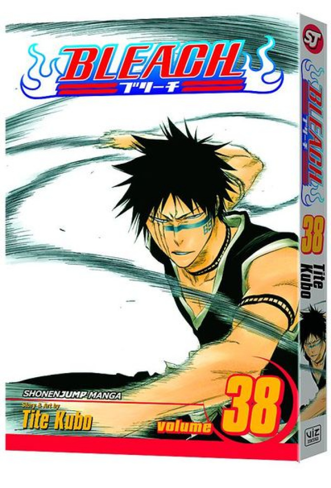 Bleach Vol. 38
