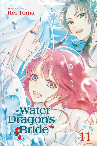 The Water Dragon's Bride Vol. 11