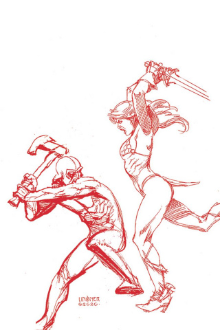 Red Sonja: The Price of Blood #2 (Linsner Crimson Red Line Art Virgin Cover)