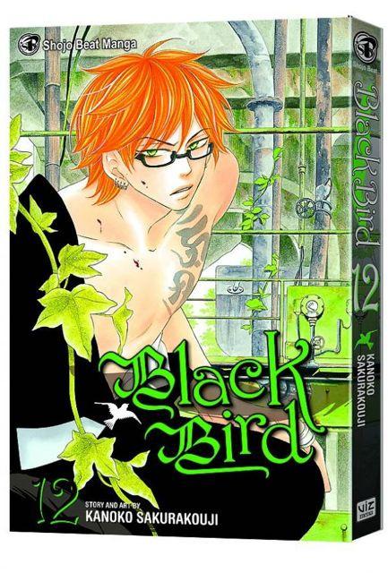 Black Bird Vol. 12