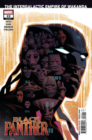 Black Panther #22