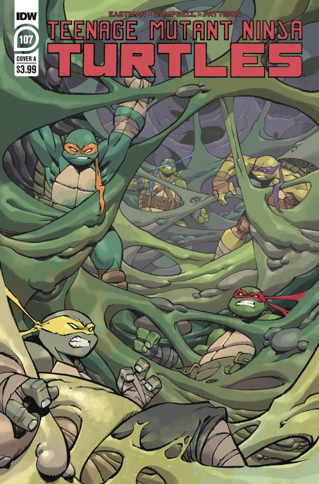 Teenage Mutant Ninja Turtles #107 (Daniel Cover)