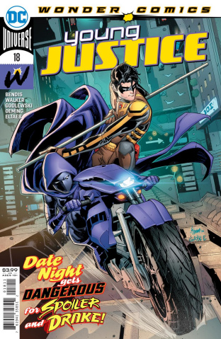 Young Justice #18 (John Timms Cover)