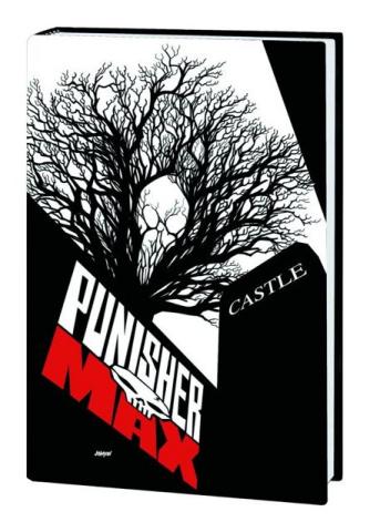 Punisher MAX: Homeless