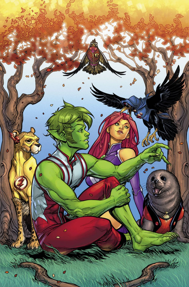 Teen Titans #16 (Variant Cover)
