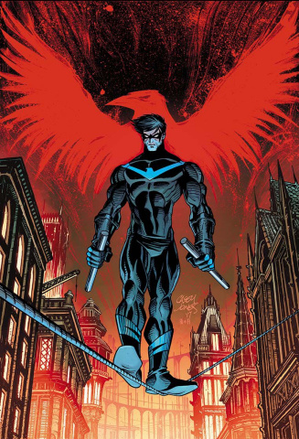Nightwing #24 (Variant Cover)