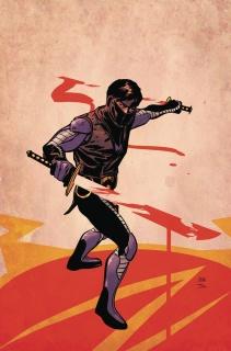 Ninjak #27 (Lieber Cover)