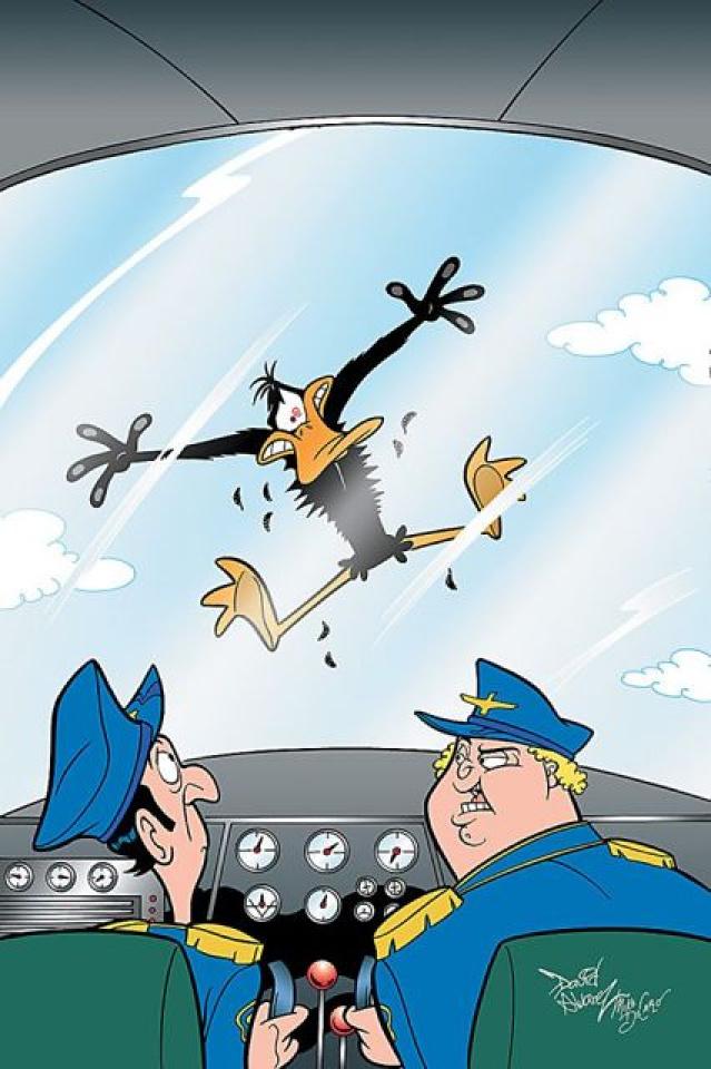 Looney Tunes #196