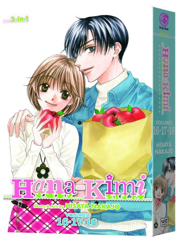Hana Kimi Vol. 6 (3-in-1 Edition)