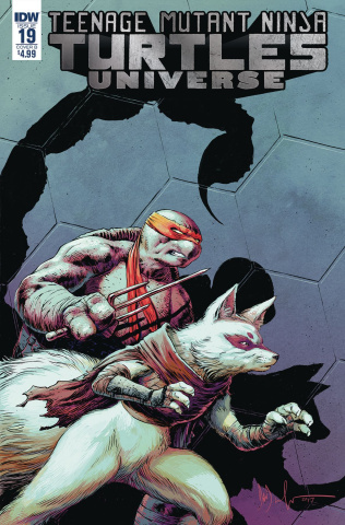 Teenage Mutant Ninja Turtles Universe #19 (Wachter Cover)