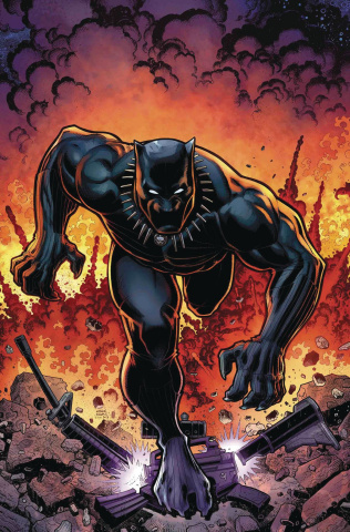 Rise of the Black Panther #6 (Adams Cover)