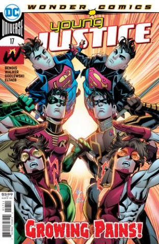 Young Justice #17 (John Timms Cover)