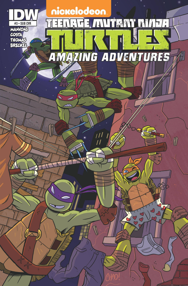 Teenage Mutant Ninja Turtles: Amazing Adventures #3 (Subscription Cover)