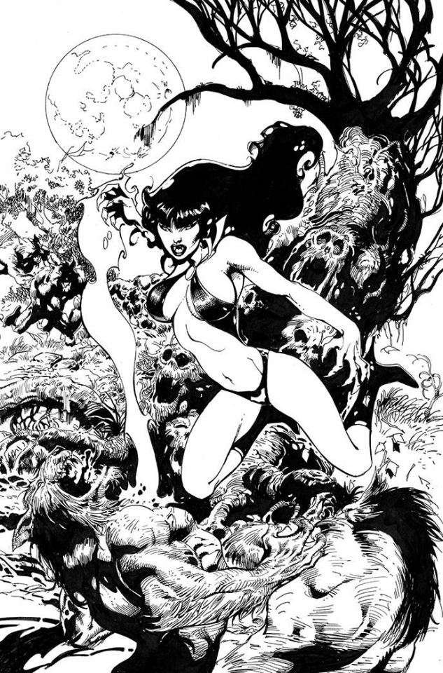 Vampirella #19 (11 Copy Castro B&W Virgin Cover)