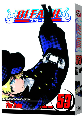 Bleach Vol. 53