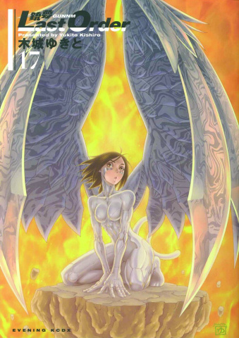 Battle Angel Alita: Last Order Vol. 17