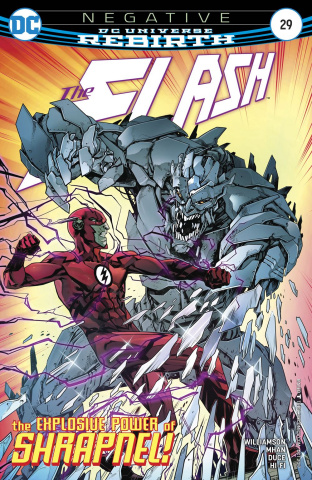 The Flash #29