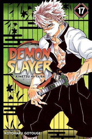Demon Slayer: Kimetsu No Yaiba Vol. 17