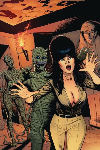Elvira: Mistress of the Dark #11 (10 Copy Cermak Virgin Cover)