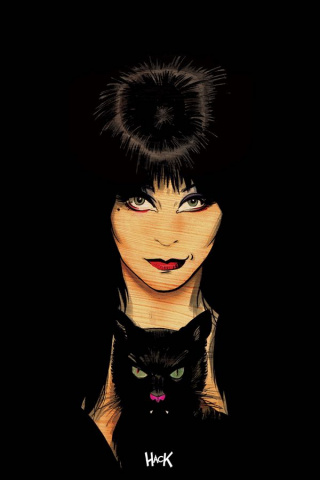 Elvira: Mistress of the Dark #5 (20 Copy Hack Virgin Cover)