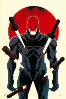 Wolverines #17